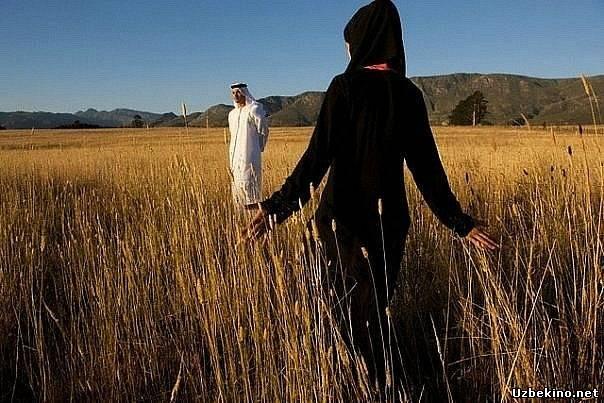Жены в исламе их отношение между собой